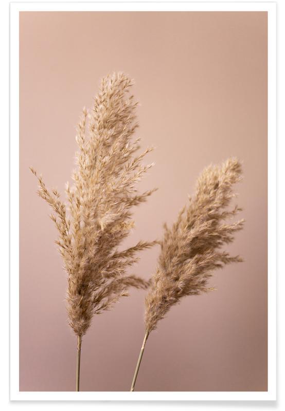 , Grass 22 Poster