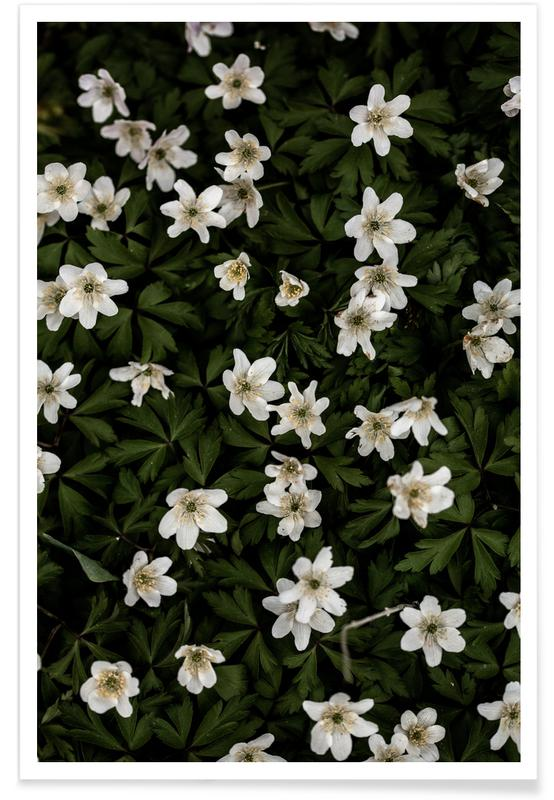 , Tiny Flowers 2 poster