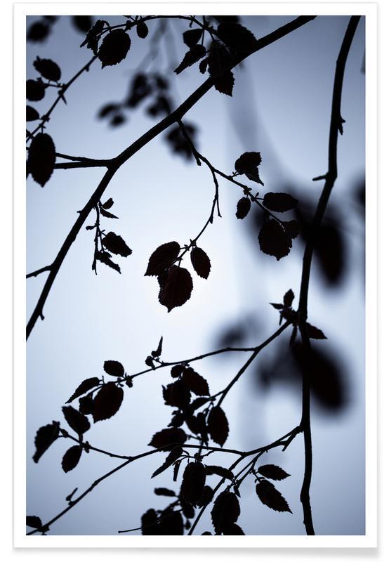 , Break Of Dawn Poster