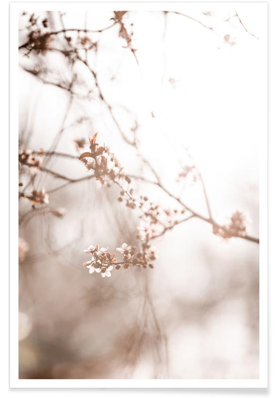 , Last Spring 3 Poster