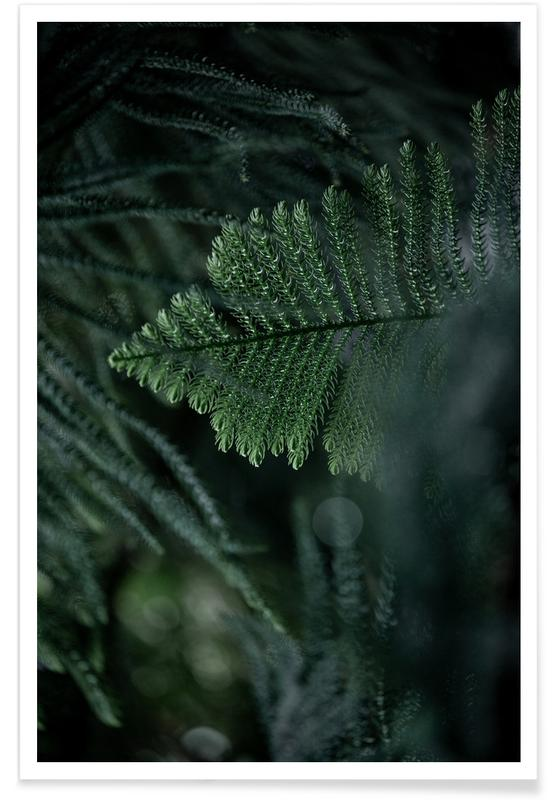 , Winter Branches 11 affiche