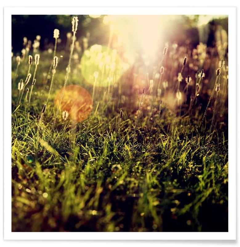 Grass 2 Poster