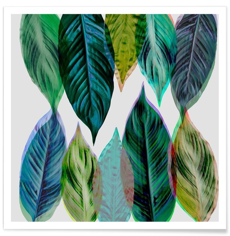 Feuilles & Plantes, Green Leaves affiche