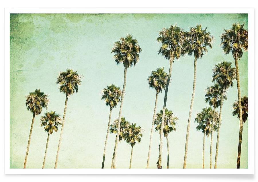 Miami, Palmer, Palm Trees Plakat