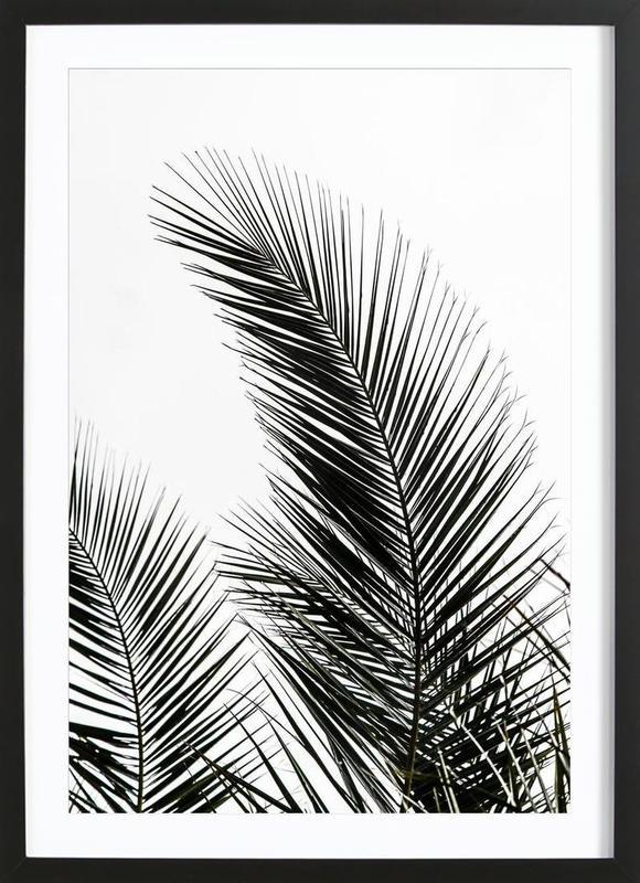 Palm Leaves 1 Framed Print
