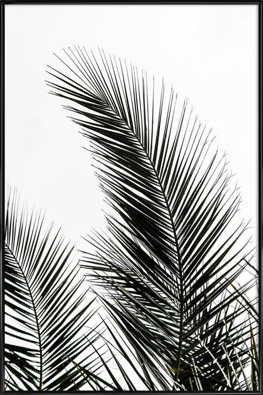 Palm Leaves 1 Framed Poster