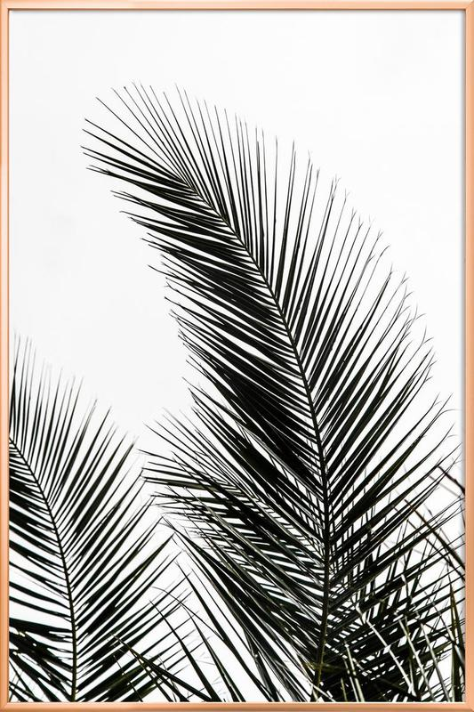 Palm Leaves 1 Poster in Aluminium Frame