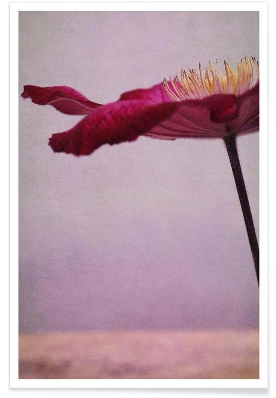 , Flower Parasol affiche