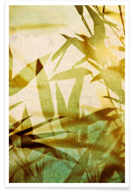 Feuilles & Plantes, Bamboo 1 affiche