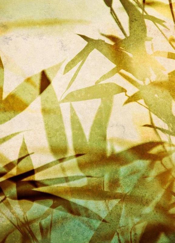 Bamboo 1 -Leinwandbild