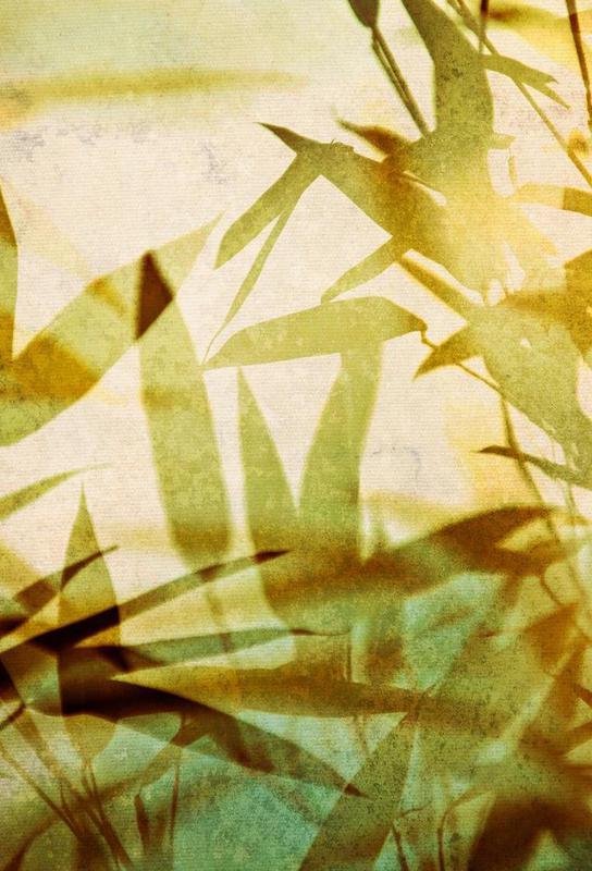 Bamboo 1 -Acrylglasbild