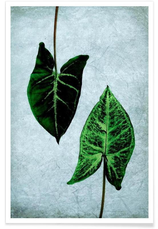 Leaves 3 poster
