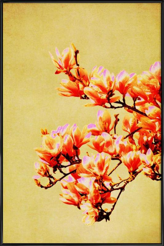 Magnolia Glow Framed Poster