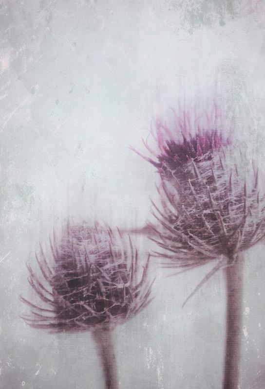 In Between -Acrylglasbild