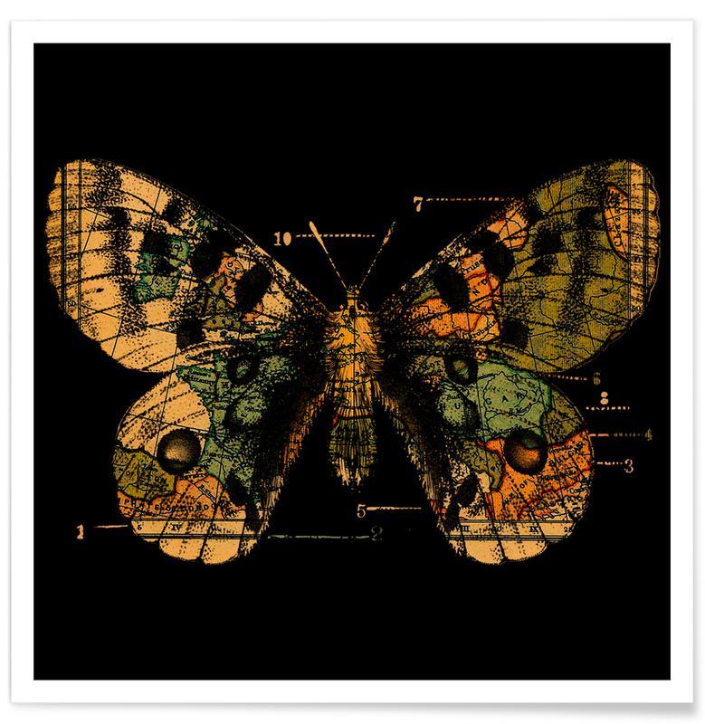 Butterflies, Time Flies Poster