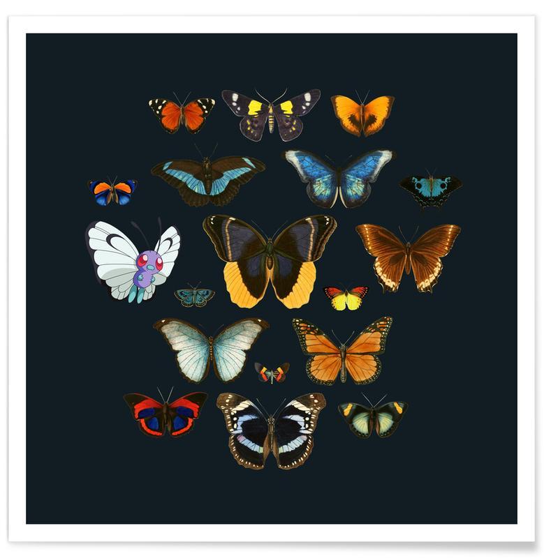 Butterflies, Entomology Poster