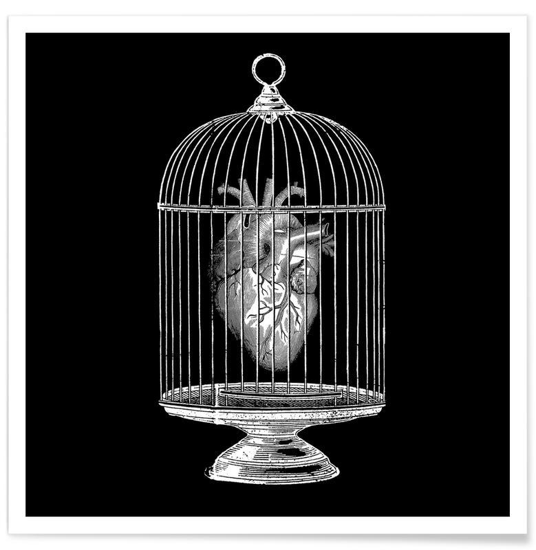 Zwart en wit, Harten, Free My Heart poster