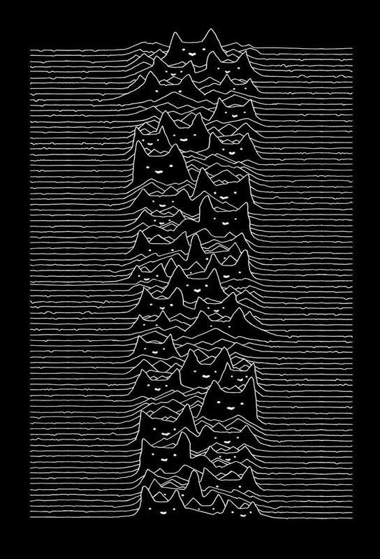 Furr Division Acrylic Print