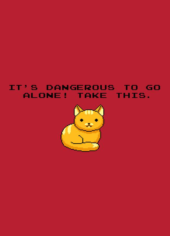 Its Dangerous To Go Alone Take This Cat Canvas Print