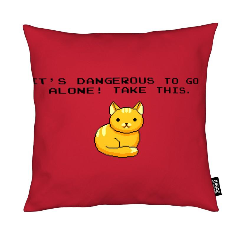 Its Dangerous To Go Alone Take This Cat