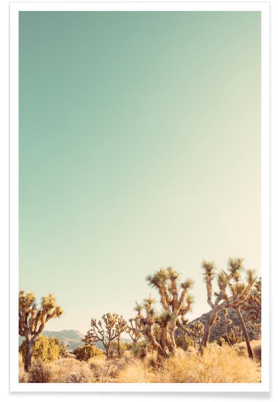 Wüsten, Curious -Poster