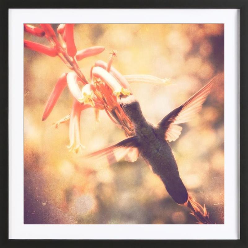 Angels flight ingelijste print