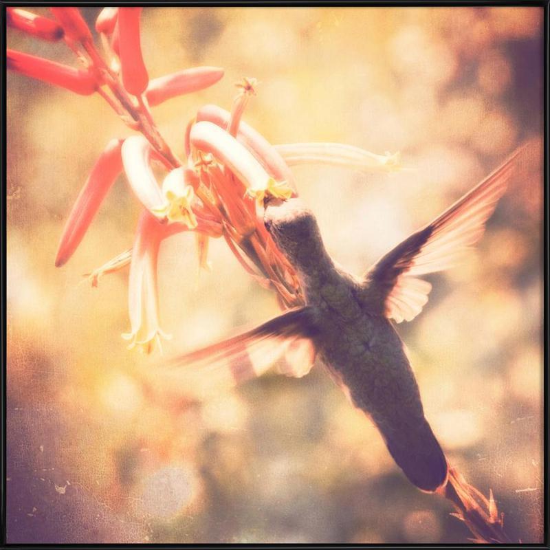 Angels flight -Bild mit Kunststoffrahmen