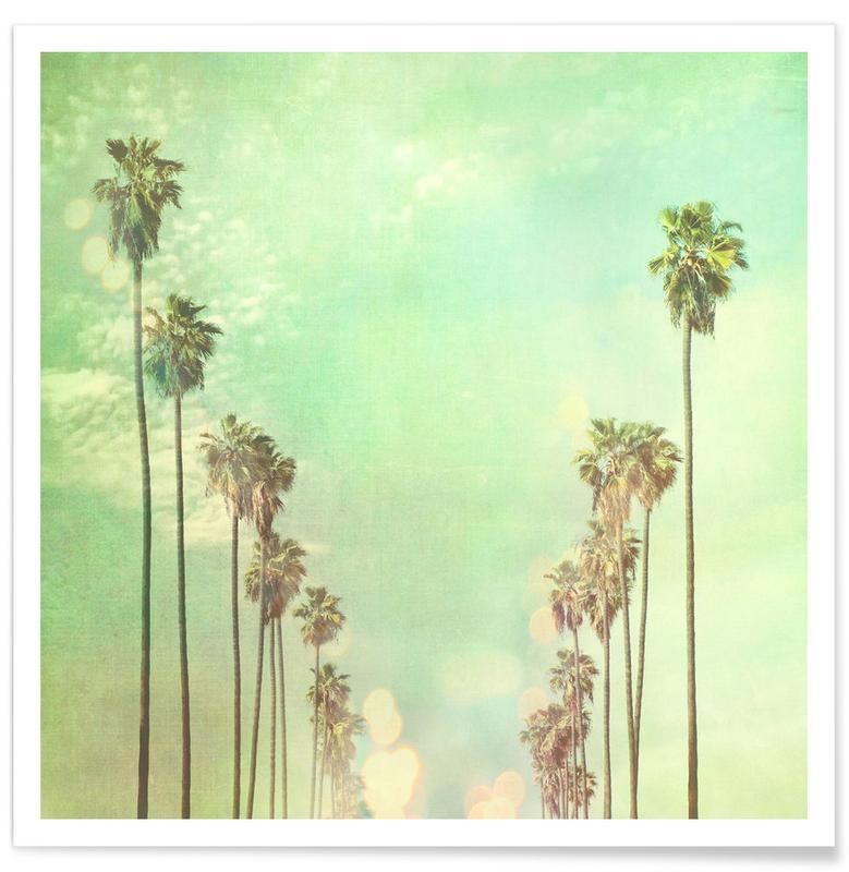 Palmiers, La La Land affiche