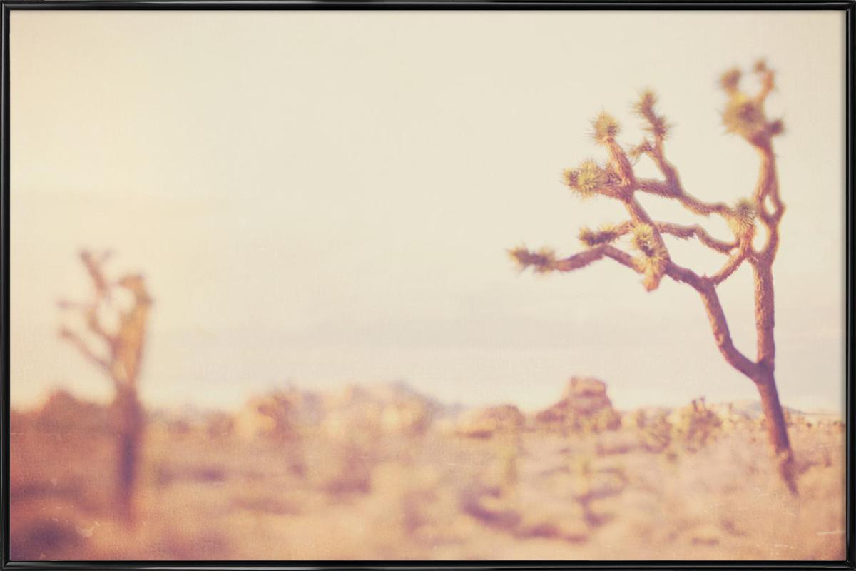 Last Night I Dreamt of the Desert No.4 Framed Poster