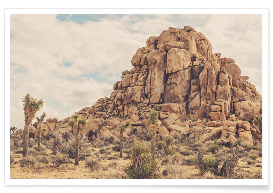 Woestijn, Cactussen, Bergen, Rocks poster