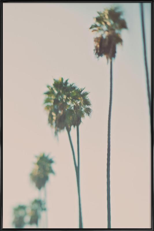 Blurry Palms Color affiche encadrée