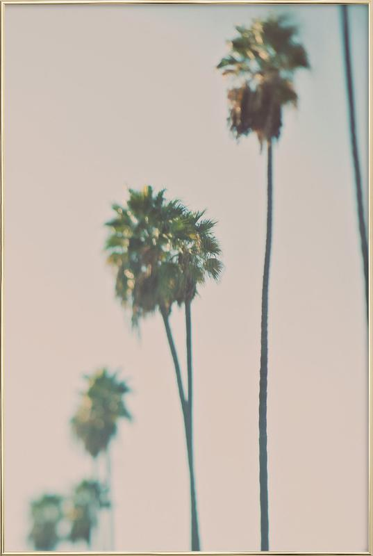 Blurry Palms Color affiche sous cadre en aluminium