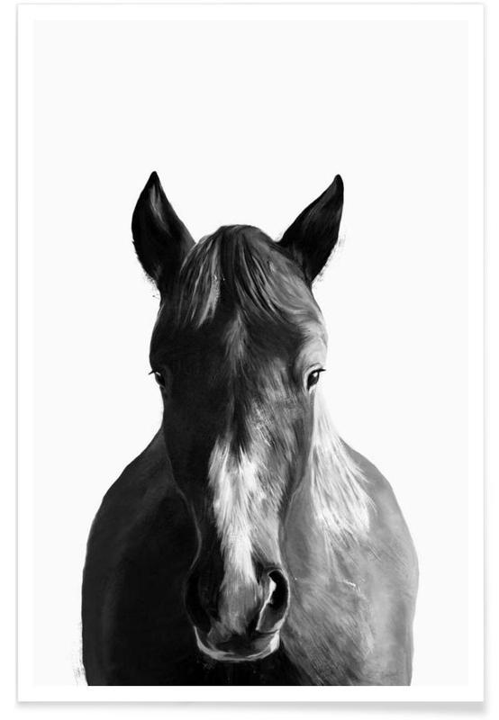 Illustration de cheval affiche