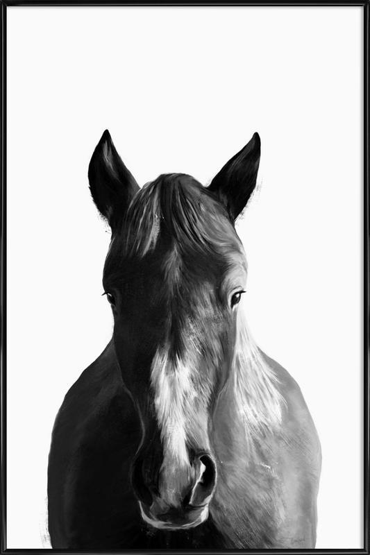 Horse affiche encadrée