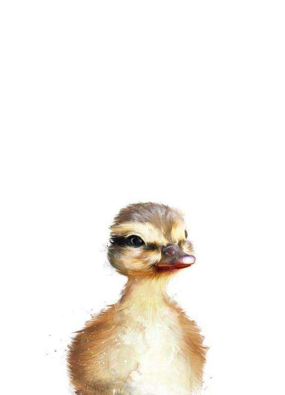 Little Duck -Leinwandbild