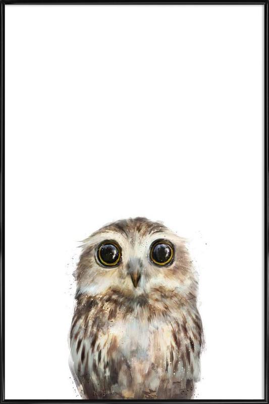Little Owl Poster i standardram