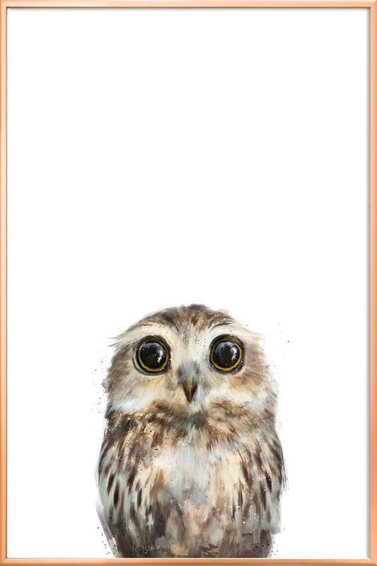 Little Owl affiche sous cadre en aluminium