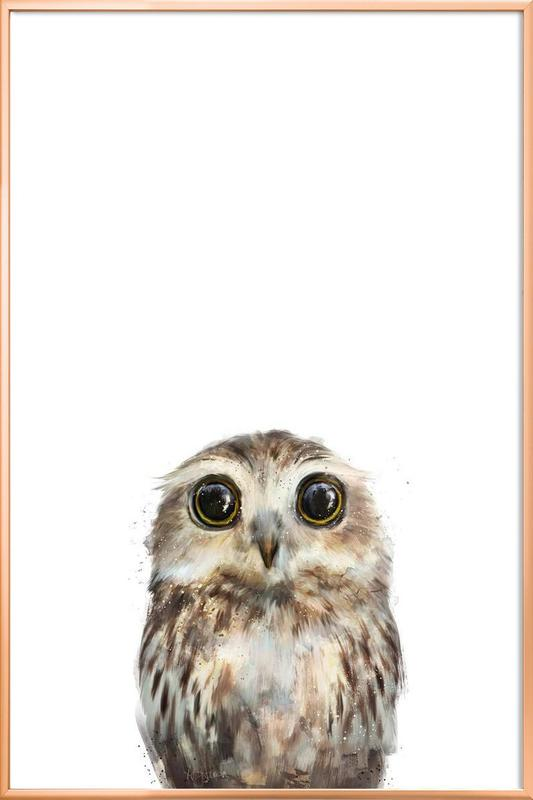 Little Owl Poster in Aluminium Frame