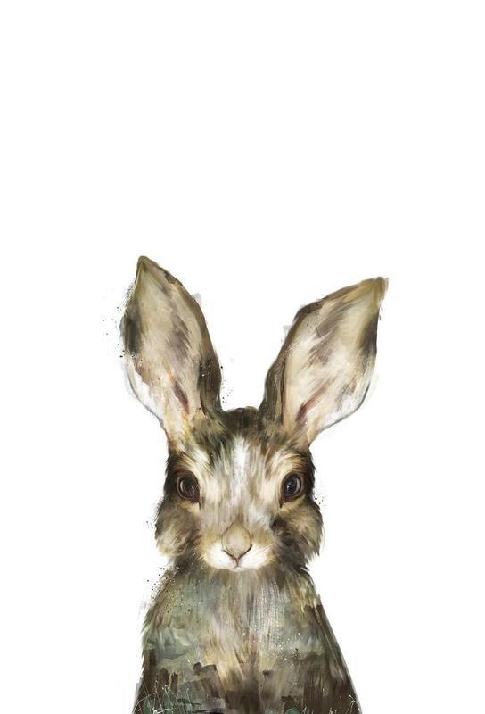 Little Rabbit Aluminium Print