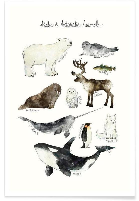 Polar Animals Illustration Plakat