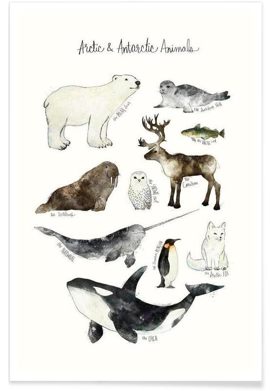 Polar Animals Illustration Poster