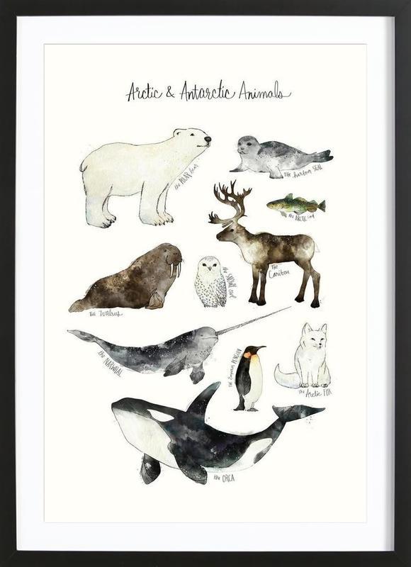 Arctic and Antarctic Animals -Bild mit Holzrahmen