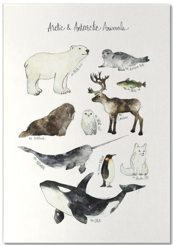 Arctic and Antarctic Animals Notepad