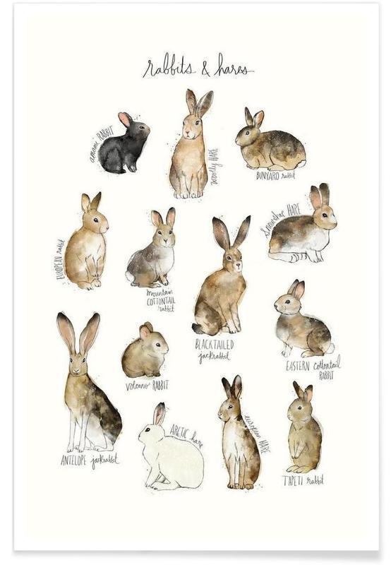Lapins, Art pour enfants, Illustration de lapins et lièvres affiche