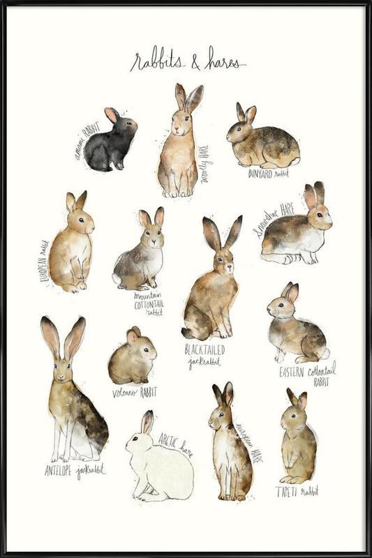 Rabbits and Hares affiche encadrée