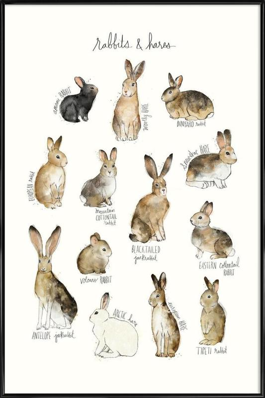Rabbits and Hares ingelijste poster