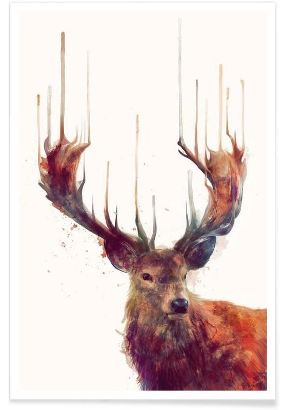 Deer, Red Deer Illustration Poster