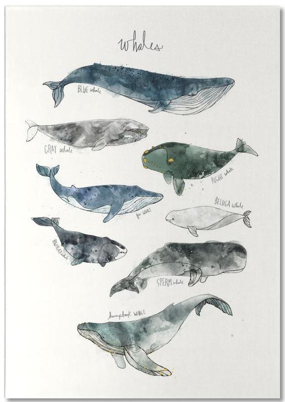 Whales -Notizblock