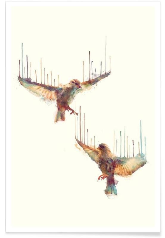 Birds Illustration Poster