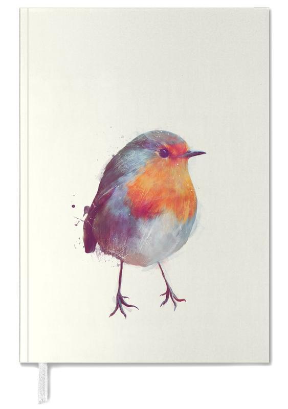 Winter Robin -Terminplaner